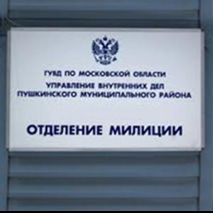 Отделения полиции Яльчиков